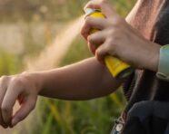 Uso di insetticidi in gravidanza, studio: «Possibile ittero neonatale»