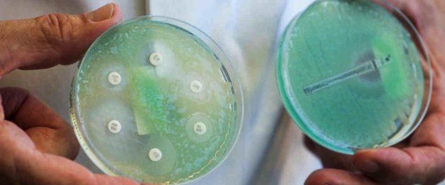Antibiotici, l'Italia tra i paesi europei a maggior consumo