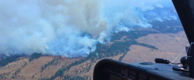 Particolato e visite per asma in presenza e in assenza del fumo di incendi