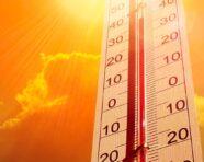 Conservazione dei farmaci, d'estate medicinali lontani da caldo e umidità