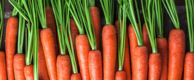 Alimentazione, carote benefiche non solo per l'abbronzatura