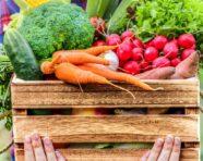 Nutrizione, frutta e verdura sempre meglio se di stagione